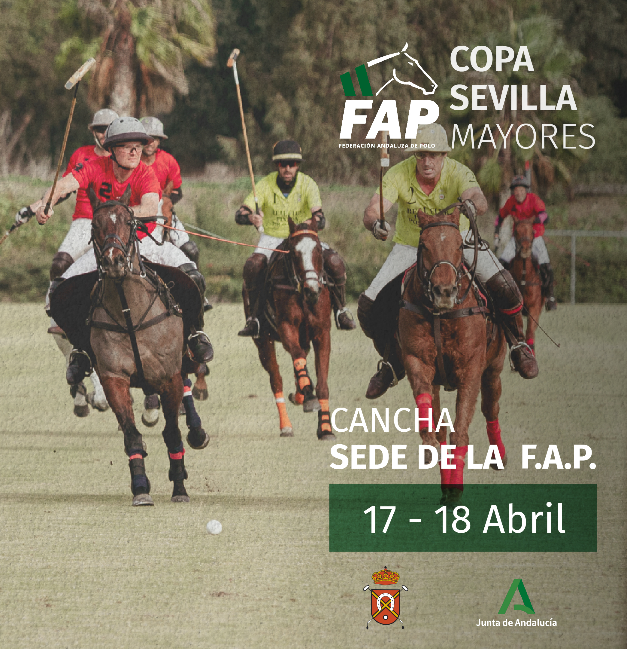 Copa Sevilla Mayores